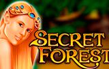 автомат Secret Forest в клубе Вулкан 24